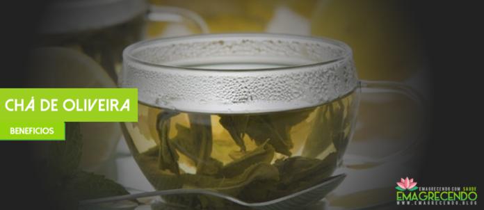 chá de oliveira
